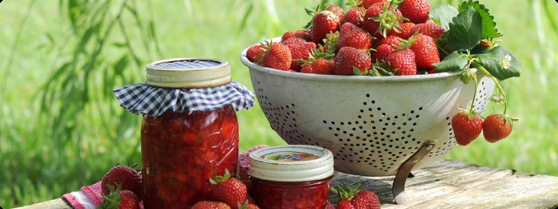 Consommer des fruits de saison bons pour la santé et préparer des conserves.