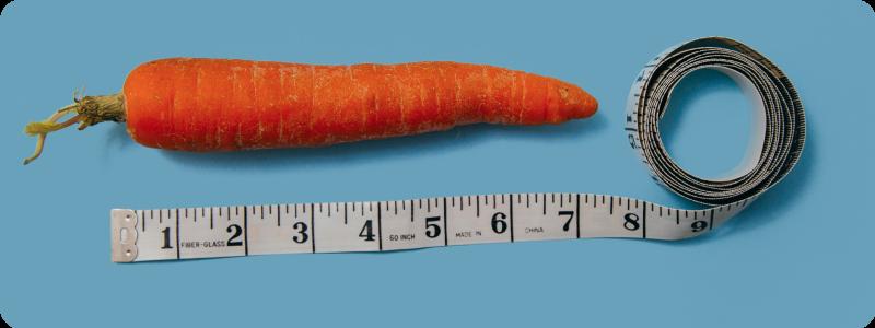 Stop au gaspillage des fruits et légumes moches !