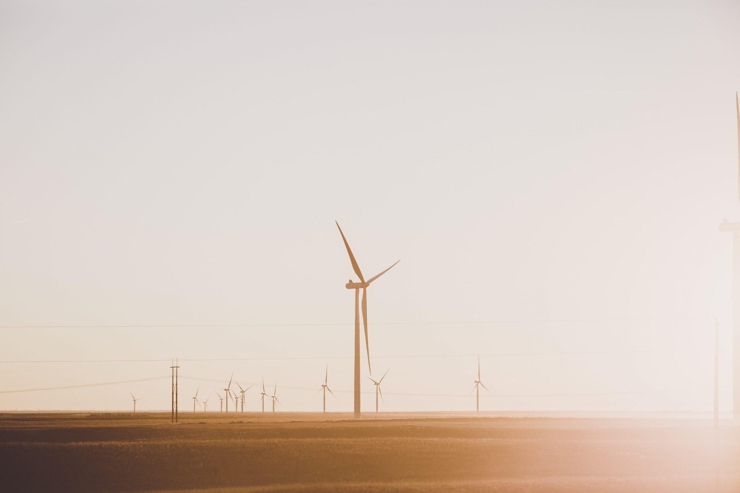 Gaspillage alimentaire et coût énergétique avec Hello Watt