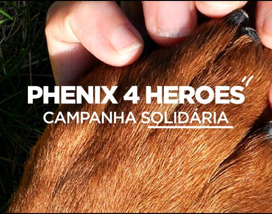 Aplicação-Phenix-Combate-ao-Desperdício